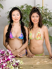 Thai Emiko and Soda playing with flowers