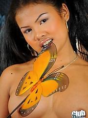 Cute Thai babe Micolo showing it all