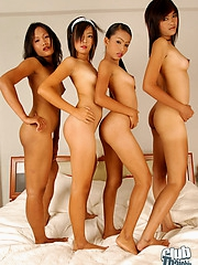 Thai lesbian groupsex play