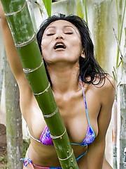 Thai Rowena riding bamboo