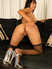 Thai Sherri nude in stockings