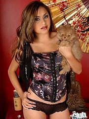 Pornstar Michelle Maylene nude