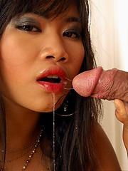 Kanda Kan and Nicha sharing cock