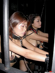 Asian lesbians get disiplined